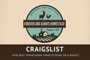 Homestead On A Budget With Craigslist