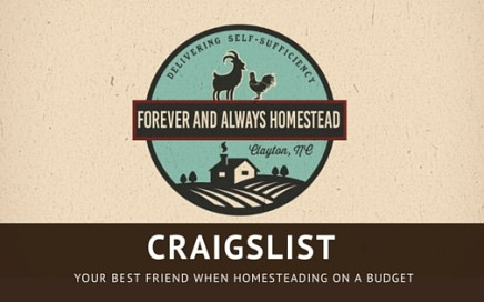 Homestead with craigslist