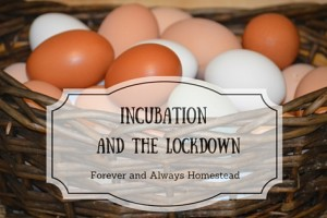 Incubation and the Lockdown