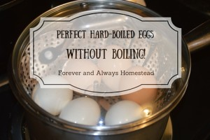 Perfect hard-boiled eggs without boiling!