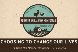 Choosing Life Change