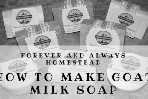 Make Your Own Goat Milk Soap