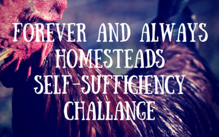 Self-Sufficiency Challenge