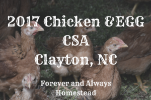 2017 Chicken and Egg CSA