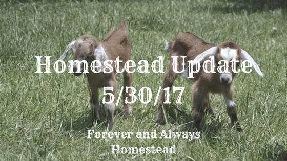 Update 30May17