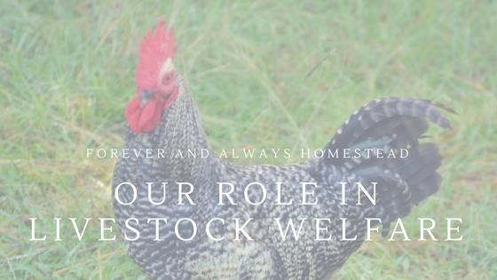 Livestock Welfare